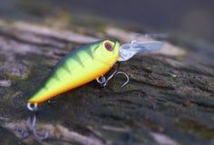 зеленый цвет рыболовства приманки Стоковые Фото