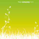 зеленый цвет сада предпосылки Стоковое фото RF