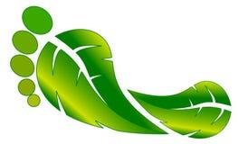 зеленый цвет следа ноги Стоковая Фотография