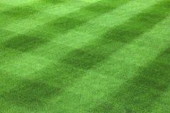 зеленый цвет стекла Стоковое фото RF