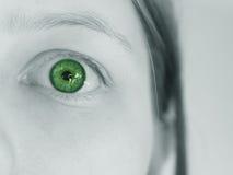 зеленый цвет темного глаза сотряст удивлено Стоковые Изображения RF
