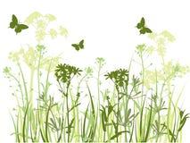 зеленый цвет травы бабочек предпосылки Иллюстрация штока