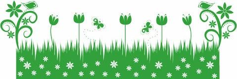зеленый цвет травы бабочек птиц Стоковая Фотография RF