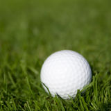 зеленый цвет травы гольфа шарика Стоковое Изображение RF