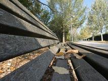 зеленый цвет травы осени даже выходит померанцовая тихая погода взгляда стоковая фотография rf