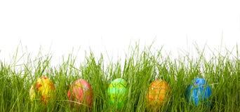 зеленый цвет травы пасхальныхя свежий Стоковые Фотографии RF