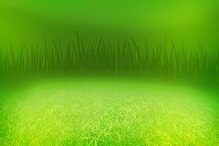 зеленый цвет травы поля Стоковая Фотография RF