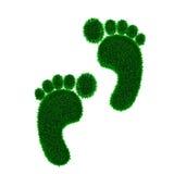 зеленый цвет травы следа ноги eco углерода Стоковая Фотография