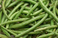 зеленый цвет фасолей свежий Стоковые Изображения
