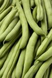 зеленый цвет фасолей французский Стоковое Изображение