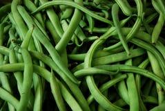 зеленый цвет фасолей Стоковое Изображение