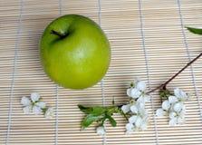 зеленый цвет цветения яблока Стоковые Фотографии RF