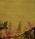 зеленый цвет цветения earthy Стоковая Фотография RF