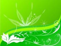 зеленый цвет цветка предпосылки Стоковое Изображение RF