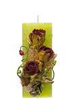 зеленый цвет цветка свечки большой Стоковое Фото