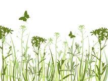 зеленый цвет цветков бабочек предпосылки Иллюстрация штока
