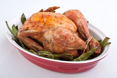 зеленый цвет цыпленка фасолей зажарил в духовке Стоковое Изображение