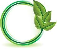зеленый цвет экологичности принципиальной схемы Стоковые Фото