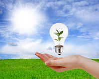 зеленый цвет энергии принципиальной схемы Стоковые Фото