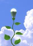 зеленый цвет энергии принципиальной схемы Стоковые Фотографии RF