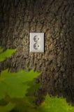 зеленый цвет энергии Стоковое Изображение RF