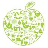зеленый цвет яблока относящий к окружающей среде Стоковые Фотографии RF