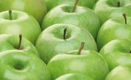 зеленый цвет яблок Стоковая Фотография RF