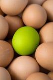 зеленый цвет яичка стоковое изображение rf