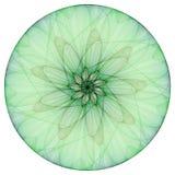 зеленый цвет ayurveda Стоковая Фотография