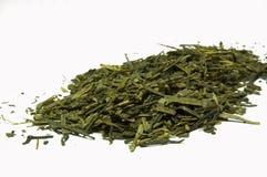 зеленый цвет bancha выходит чай Стоковое фото RF