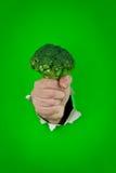 зеленый цвет broccolli Стоковое Фото