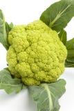 зеленый цвет cauliflower близкий свежий вверх Стоковые Изображения RF