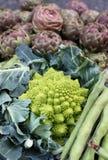 зеленый цвет cauliflower стоковые изображения rf