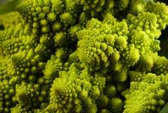 зеленый цвет cauliflower Стоковое Изображение