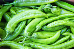 зеленый цвет chillie Стоковые Фотографии RF
