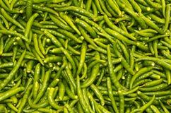 зеленый цвет chillis Стоковые Фото