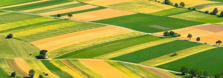 Зеленый цвет fields вид с воздуха стоковое фото