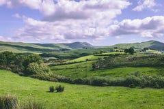 Зеленый цвет fields как увидено от зазора Cousane в пробочке графства, Ирландии стоковые изображения rf