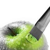 зеленый цвет gary Стоковая Фотография
