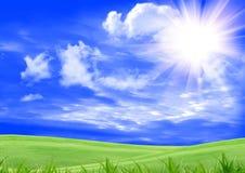 зеленый цвет glade Стоковое Изображение RF