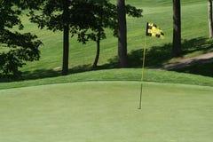 зеленый цвет golfcourse флага прохода Стоковая Фотография