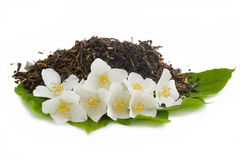 зеленый чай жасмина Стоковое Фото