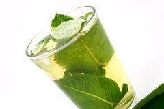 зеленый чай льда Стоковые Изображения