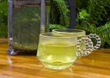 зеленый чай природы s Стоковое Изображение RF