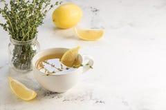 Зеленый чай с лимоном и тимианом, космосом экземпляра Стоковая Фотография