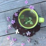 Зеленый чай с мятой с малыми цветками сирени флокса вокруг на серой деревянной предпосылке Стоковая Фотография RF