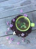Зеленый чай с мятой на серой деревянной предпосылке, взгляд сверху Стоковые Фотографии RF