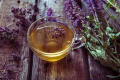 Зеленый чай с herbals Чай с душицей на деревянном backgroun Стоковое Изображение