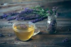 Зеленый чай с herbals Чай с душицей на деревянном backgroun Стоковые Фотографии RF