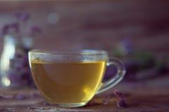 Зеленый чай с herbals Чай с душицей на деревянном backgroun Стоковая Фотография RF